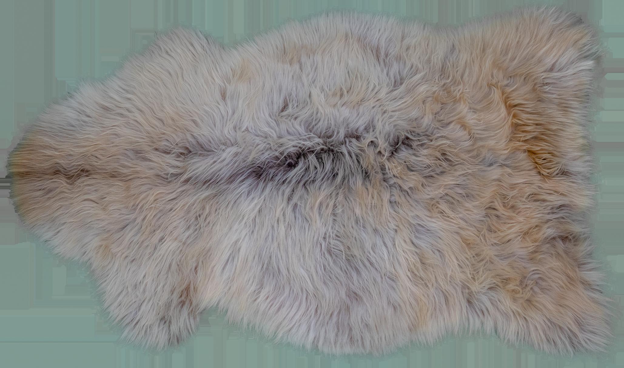 Farblich wie ein großes Island-Schaffell